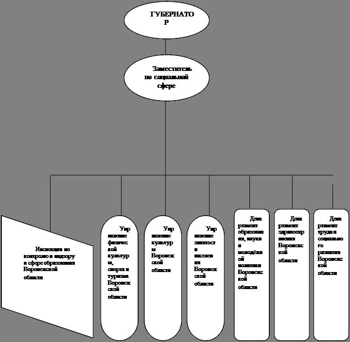 Система Органов Исполнительной Власти Курсовая