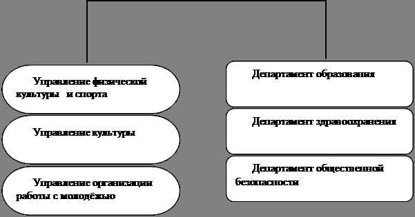 Система организации управления социальной сферой в муниципальном образовании - городском округе Воронеже.